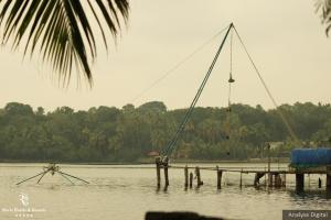 Economy of the Ashtamudi Lake Area